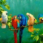 Birds-GAM181